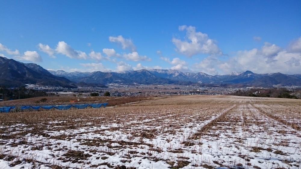 東山観光農園